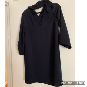 Zara V-neck Dress